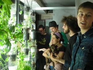 Window Farm hydroponic window garden